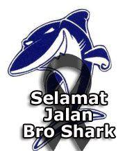 shark_in_memoriam.jpg